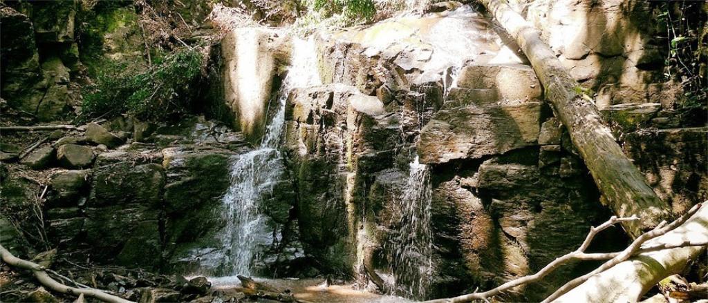 Не Шипотом єдиним: які ще закарпатські водоспади варто побачити