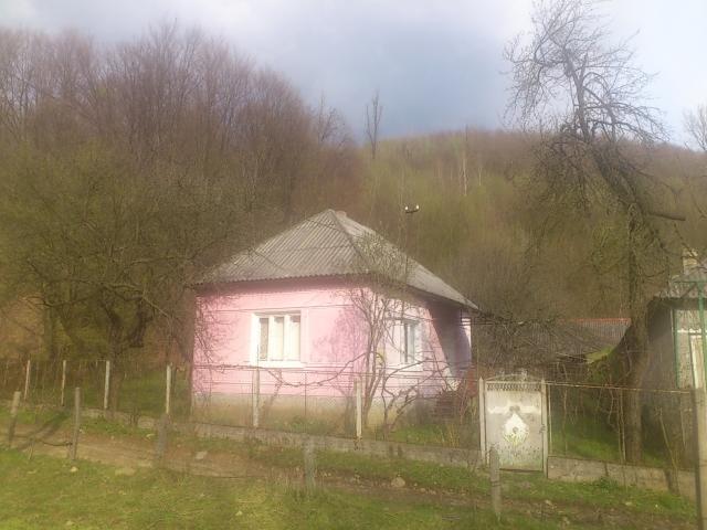 сверхнормативного дом купить в мукачевском районе с колчено хороший частный