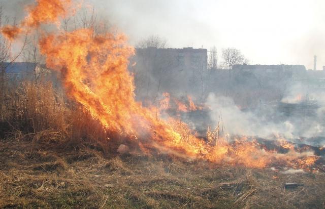 Вогонь підбирається до хат: на Закарпатті щодня палять траву (ВІДЕО