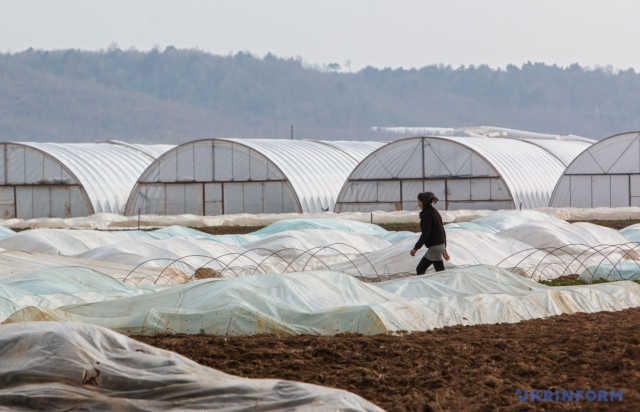 Як починається тепличний сезон у Заріччі в умовах карантину (ФОТО)