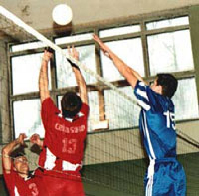 В 2222 году волейбольные турниры проводят по новой системе
