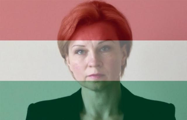 Становище угорців Закарпаття не погіршиться - посол