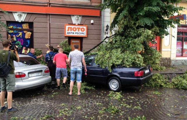 Наслідки буревію в Ужгороді: повалені дерева та потрощені авто (ФОТО, ВІДЕО)