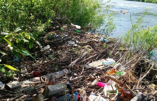 Острів зі сміття утворився на Тисі поблизу Тячева (ВІДЕО)