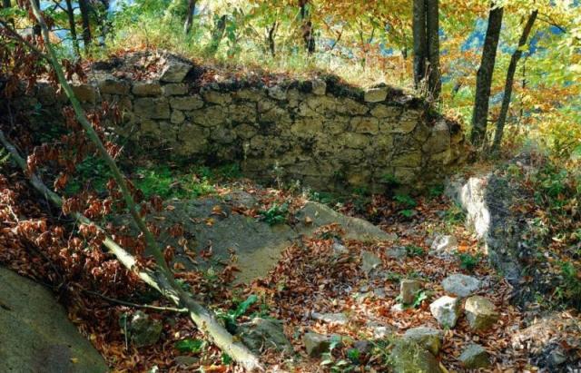 Посеред 100-річних буків на Іршавщині сховані руїни маловідомого замку (ФОТО, ВІДЕО)