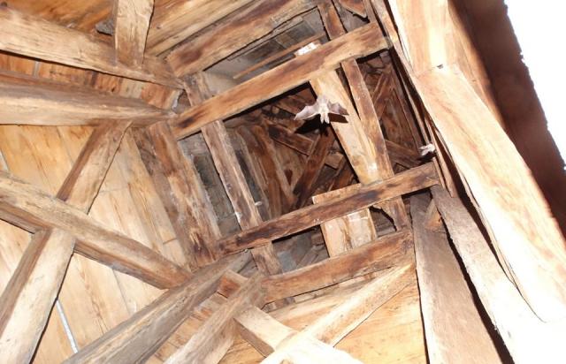 Краще не турбувати: Під дахом храму оселились страхітливі на вигляд тварини (ФОТО)