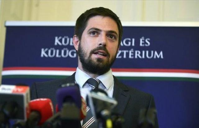 Вакцину дітям  Закарпаття  дарують угорці