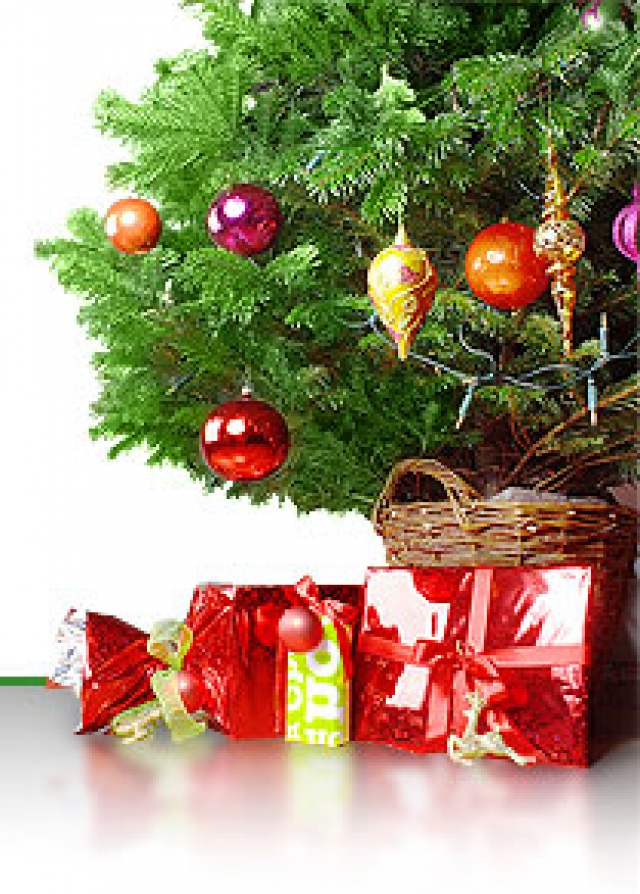 Новогодний подарок в кургане