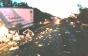 Жахлива ДТП на Львівщині: Загинуло подружжя з Закарпаття та водій з Франківщини (ФОТО, ВІДЕО)