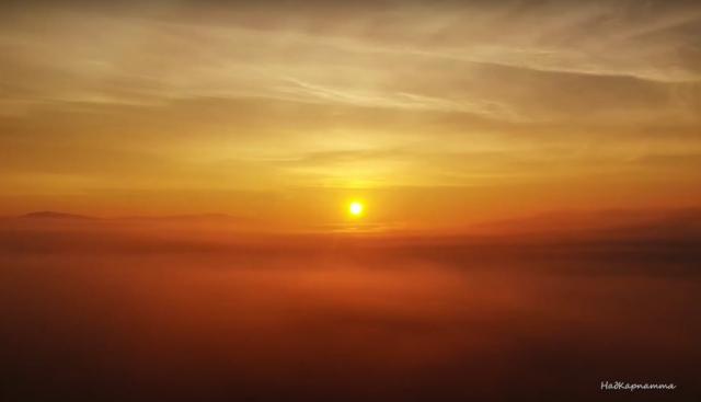 Відео дня: політ над туманом на Хустщині