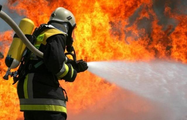 Цифра дня: За червень на Закарпатті сталося 1015 пожеж