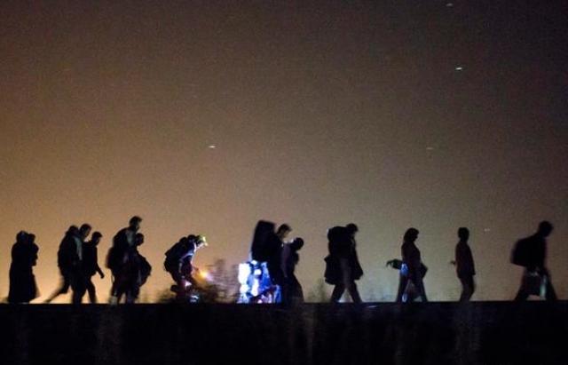 """За 10 км від українсько-словацького кордону між КПП """"Ужгород – В.Нємецьке"""" та """"М.Березний – Убля"""" затримали 24 в'єтнамців-нелегалів"""