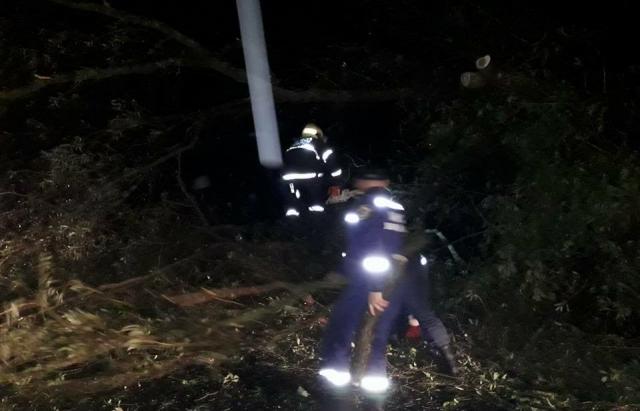 Наслідки буревію: Без електрики залишається 31 село (ФОТО)