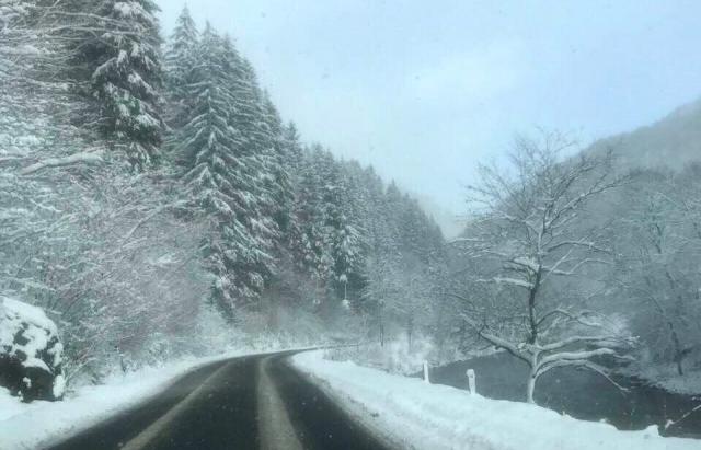 Сьогоднішні кадри з високогір'я Закарпаття, де вирує справжня зима