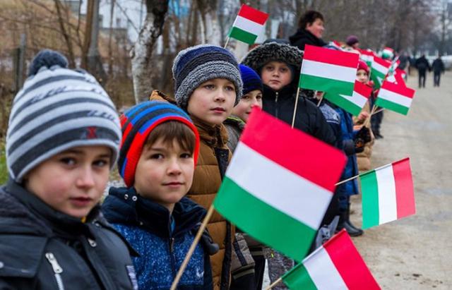 Думка з Угорщини: 2017 рік став найважчим в історії України для закарпатських угорців