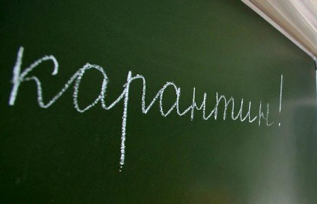Школи та садочки Тячівщини закрили через кір