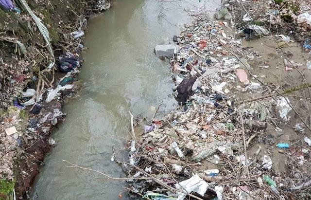 Витоки закарпатських річок перетворюються на смітники