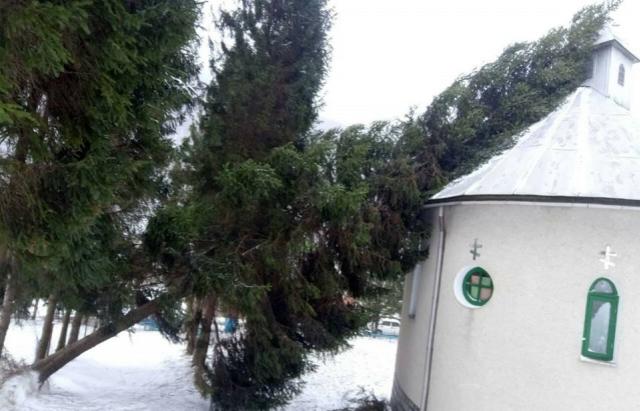 Повалені дерева та 20 застряглих авто: вихідні на Закарпатті