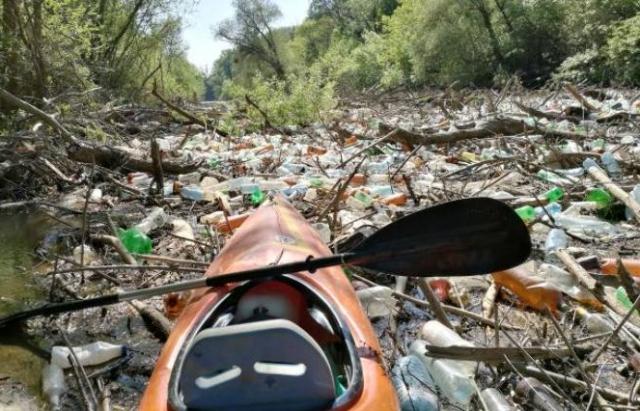 Словаки та угорці шоковані: річку Бодрог повністю перекрило сміттям, принесеним із Закарпаття (ФОТО, ВІДЕО)
