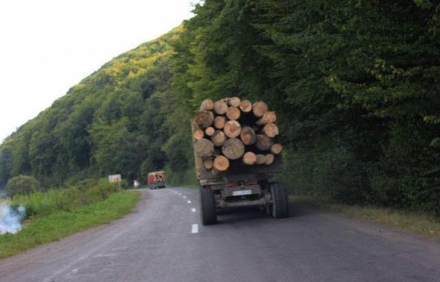 """На Міжгірщині  затримали """"МАН"""" з 39 кубометрами лісу"""