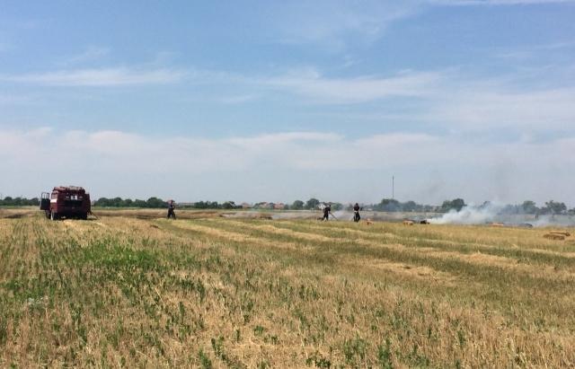 Горіло-палало: На Мукачівщині рятувальники гасили поле з пшеницею (ФОТО)