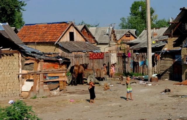 Відео дня: як живуть роми в Берегові