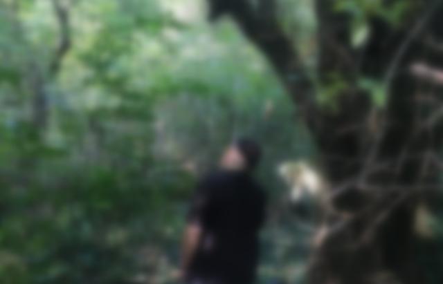 У Боздоському парку в Ужгороді виявили повішеного екс-силовика (ФОТО 18+, Доповнено)