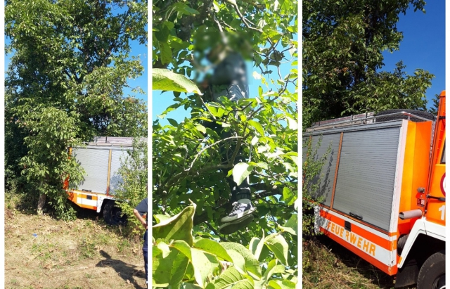 В Ужгороді на дереві повісився 21-річний хлопець (ФОТО 18+)