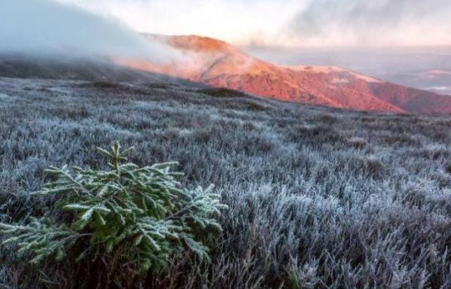 Буде холодно: Синоптики попереджають про заморозки на Закарпатті