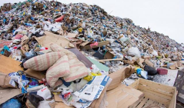 У Берегові знову горіло сміттєзвалище