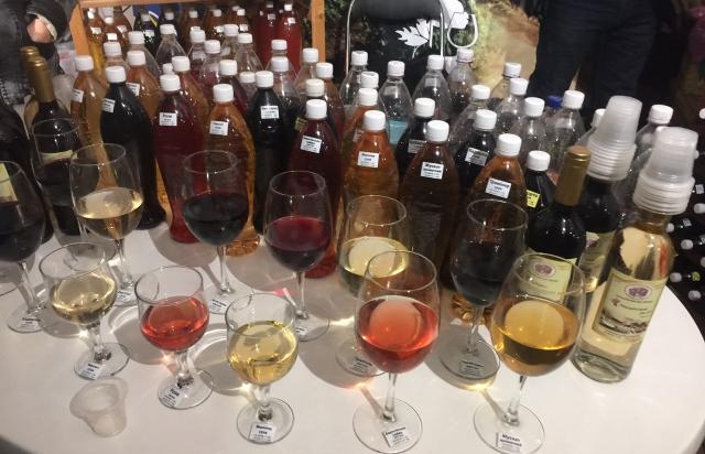 Картинки по запросу закарпатські вина