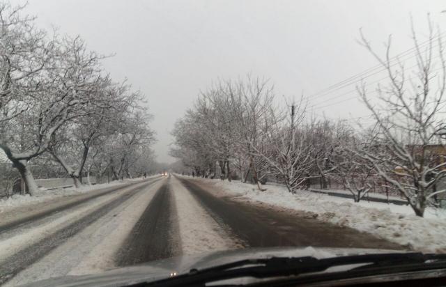 Транспортний колапс: основні дороги Закарпаття вкриті снігом, водії ледь їдуть (ФОТО)