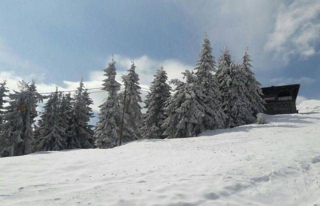 Гірськолижний курорт Драгобрат замело снігом (ФОТО)
