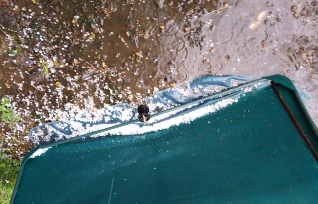 У Берегові пройшов сильний дощ із градом (ФОТО, ВІДЕО)