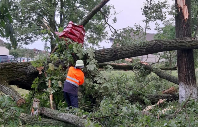 Внаслідок буревію на Закарпатті травмувалось 2 жінки. Підраховано пошкоджені будинки (ФОТО)
