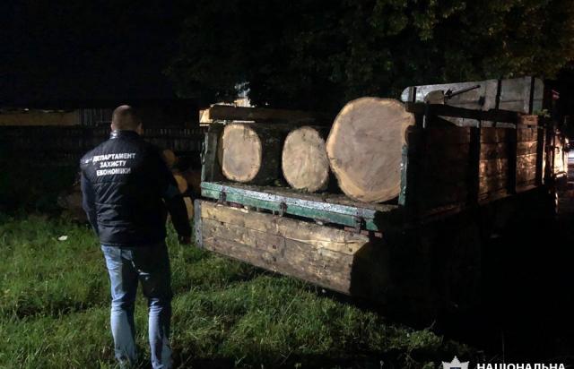 На Закарпатті затримали майстра лісу, який вимагав понад $15 тис хабара (ФОТО)