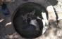 Як на Берегівщині з пастки рятували корову (ФОТО)