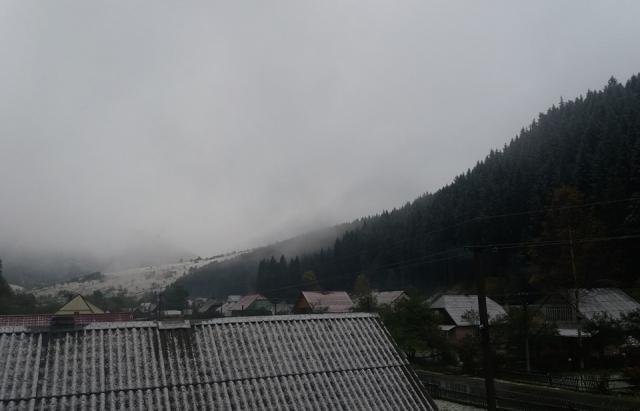 Фото дня: Синевир засипало снігом