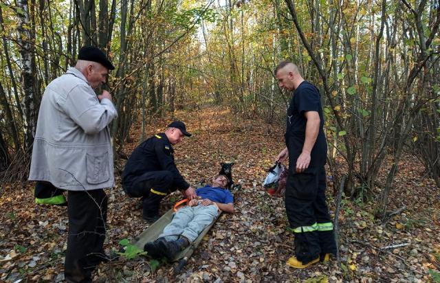 Закарпатський Хатіко: Пес не покинув свого господаря, якому стало зле у лісі (ФОТО)