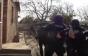 Угорці розлютилися: поліцейський спецназ затримує спільника шантажиста із Закарпаття (ФОТО, ВІДЕО)