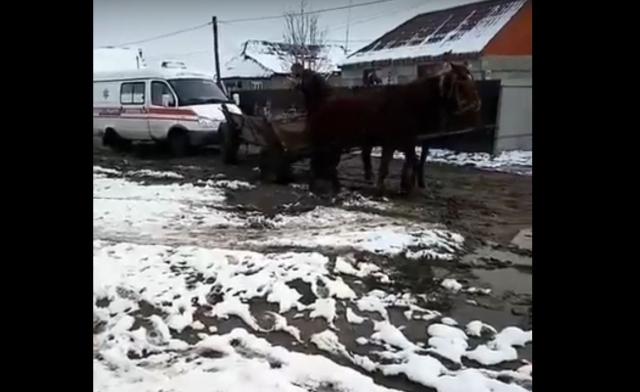 Як на Закарпатті коні швидку допомогу тягнули (ВІДЕО)