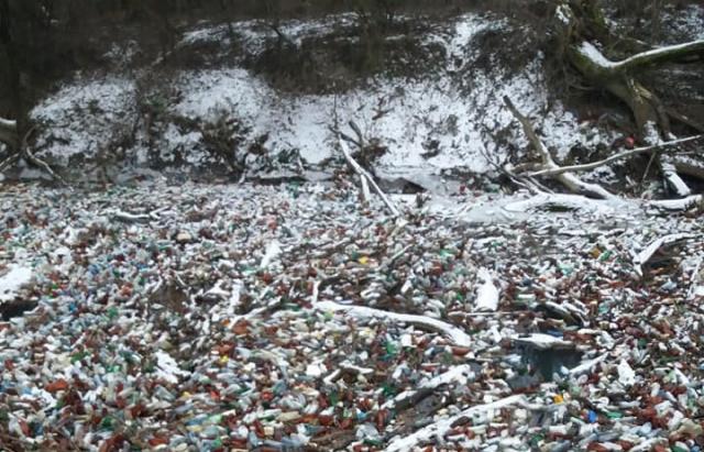"""Жахлива картина: У мережі показали """"острів"""" із пляшок на річці Боржаві (ФОТО)"""