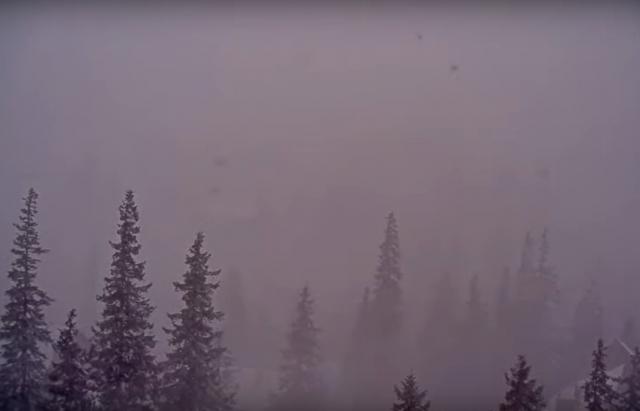 Гірськолижний курорт Закарпаття охопив сніговий шторм (ВІДЕО)